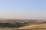 palouse_farmland_03Sep2008_0892.jpg
